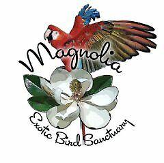 Magnolia Exotic Bird Sanctuary