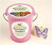 Grow Your Own Butterfly