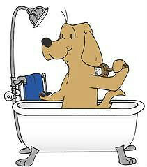 Pet Grooming position available to Experienced Insured groomer
