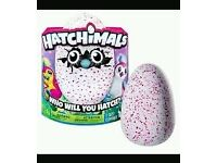 Hatchimal pengualas pink
