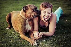 Devenez un gardien de chiens dès maintenant sur Pawshake! Gatineau Ottawa / Gatineau Area image 4