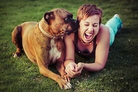 Pawshake is seeking Pet Sitters and Dog Walkers! Sign up today! Free insurance included. St Albans.