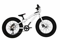"""2016 CHARGE COOKER 20"""" FATBIKE"""