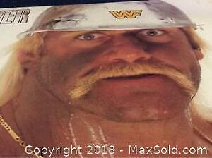 WWF Hulk Hogan Lp Record