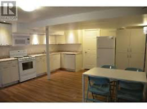 3 Bed Basement Student Apartment-Steps From Georgian