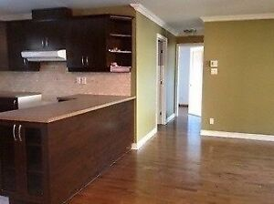 Condo 4 1/2 for July 1st Cadillac metro green line