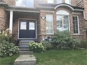 3 B/R, 3 W/R finished basement town house for rent