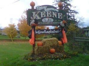 Wanted: house or apartment rental in Keene