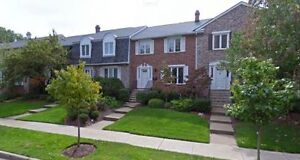 Quiet Semi Retired Non Smoker Seeks 2 bd Townhse/Condo FOR RENT