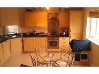 Modern 2 Bedroom Apartment Harrowby Street Cardiff Bay