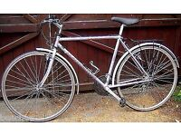 2010 Claud Butler 21-Speed Size-21 Road Bike in Excellent Order