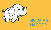 Big Data Hadoop Training and Job Placement Assistance