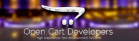Responsive OpenCart Web Development