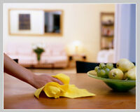 Janitorial service (homes, offices and more!)