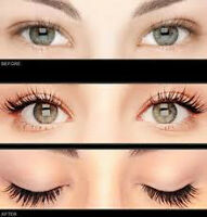 lashes lashes extensions eyelash  eye lash certified  tech