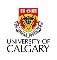 University of Calgary grad can write your essay or term paper