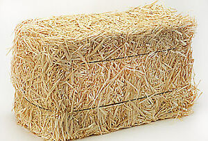 2018 Small Square Straw Bales