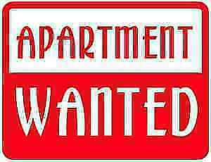 1 Bedroom Apt Wanted