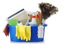 ** Eco-friendly Professional Housekeeper Sussex and Area **