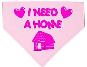Urgent Home needed