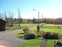 HORSE BOARDING AVAILABLE - 15 MINUTES FROM AMHERST, NS