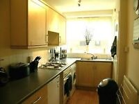 1 bedroom flat in Manor Gardens, W4