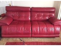 Large Sofology Leather Sofa