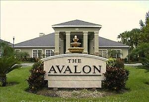 Clearwater Florida Vacation Rental The Avalon