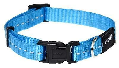 9f9690103d5 Rogz for dogs nitelife halsband turquoise | 2ememain.be