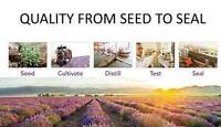 Distributors needed for Young Living Essential oil GP & area
