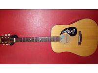 1970's Epihone ft140 signed by no other than the great Don Mclean Of American Pie Fame!!