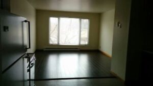 Newly Renovated Two (2) Bedroom 850 sq ft - May 1st - $750 mth