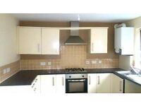 unfurnished 4 bedroom town house in Laudsdale Road,Rotherham for just £150 PW.SORRY LET NEW