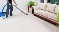 Organic/All Natural Professional Carpet Cleaning