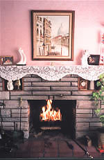 Burn Wood Pellets in your fireplace or stove