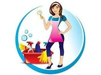 Domestic house cleaning and ironing,whitchurch