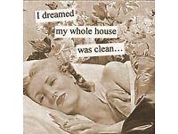 Domestic cleaner/housekeeper seeking work in Belfast