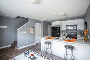 BRAND NEW!! 2 Bedroom  Basement Suite Available Nov 1st