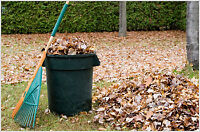 Fall Clean Up !! Leaves, Eavestroughs, Hedges, Trees, Dump Runs