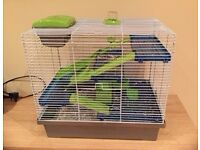 Lovely Dwarf red eyed Hamster,loves being handled,with large cage..etc
