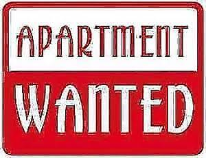 Professional female looking for small dog friendly apt Jan 1