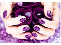 *** SHELLAC SUMMER SALE! ***
