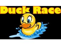 Duck Race Ducks For Hire