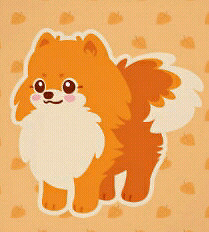 ☆☆Seeking Orange Pomeranian Pups☆☆