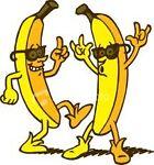 Danna Bananas Thrift Store