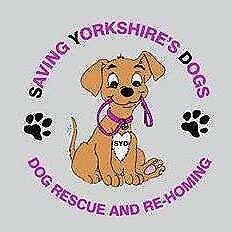SAVING YORKSHIRE'S DOGS  SYD