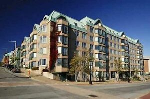 One Bedroom Halifax Waterfront Condo Available May 1