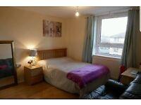1 Master bedroom for rent near Langdon Park DLR station