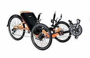 (NOW 10% OFF) RECUMBENT CATRIKE 5.5.9