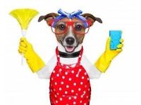 A1 Squeaky Klean : Professional Cleaners available to clean your home in Fife. Fully insured